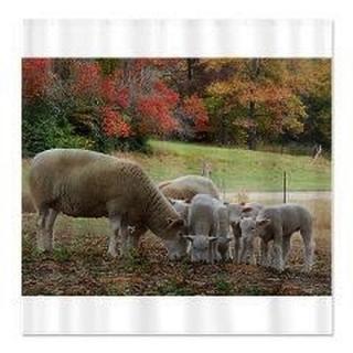 Fall Sheep Shower Curtain