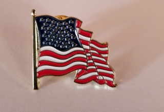 Flag Pin product image