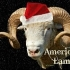 American Lamb Christmas Cards preview image