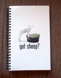 Got Sheep? Journal product image
