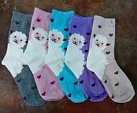 Sheep Socks product image
