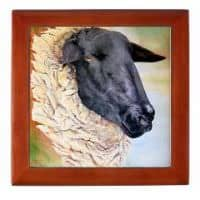 Suffolk Ewe Keepsake Box product image